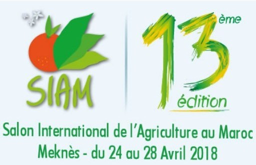 Partecipazione al SIAM Meknes Marocco
